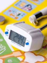 Термометр E278